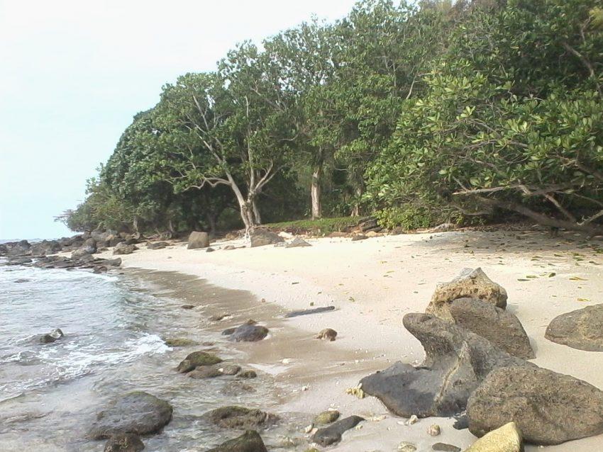 Wisata Tanjung Lesung Backpacker
