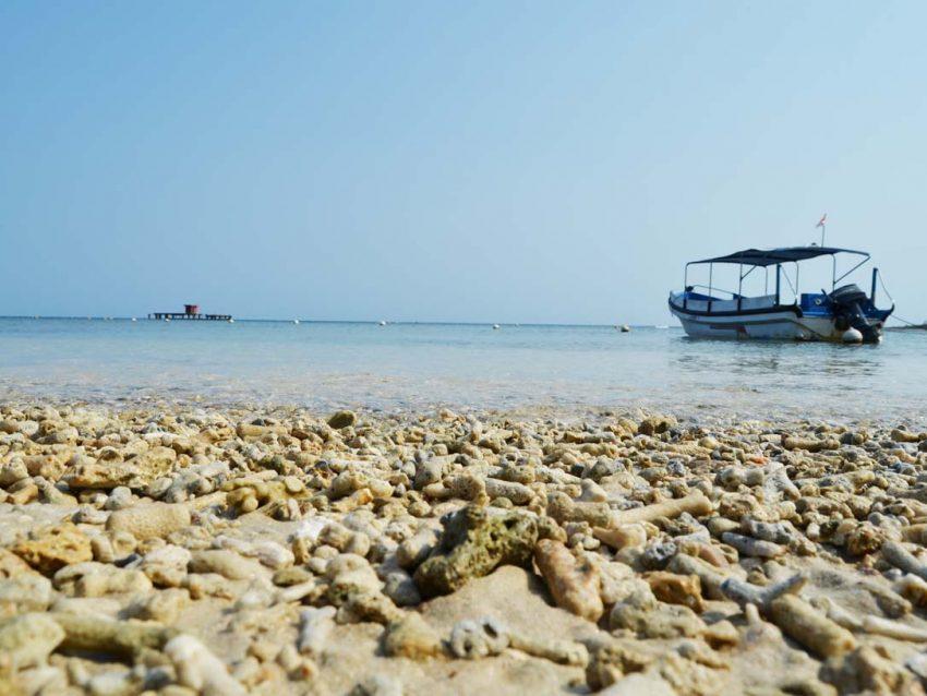 Wisata Tanjung Lesung Murah
